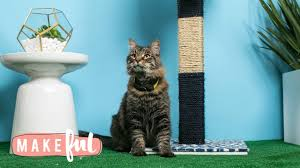 Modern Cat Scratching Post Chic Diy Cat Scratching Post Pet Projects Youtube
