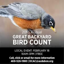 Audubon Backyard Bird Count by Audubon Texas Headquarters Dogwood Canyon Audubon Center
