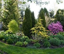 Garden Shrubs Ideas Small Yard Small Garden Landscaping Ideas Shrub Evergreen And