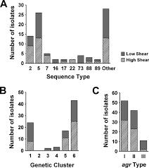 versatility of biofilm matrix molecules in staphylococcus