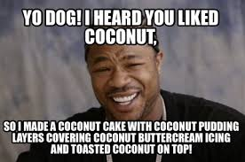 Yo Dog Meme - meme creator yo dog i heard you liked coconut so i made a