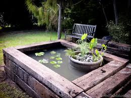view our aquarium design fish tanks garden ponds redfish