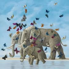 elephant butterfly 3d canvas wall canning interiors