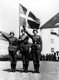 German War Flag Members Of The Free Corps Denmark Danish Frikorps Danmark