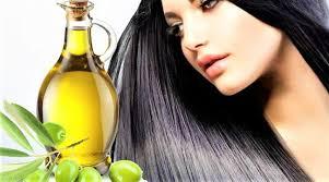 Minyak Zaitun Untuk Memanjangkan Rambut inilah manfaat minyak zaitun untuk rambut agar sehat