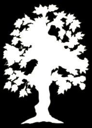 simple flowering tree outline by andy silhouette of flowering