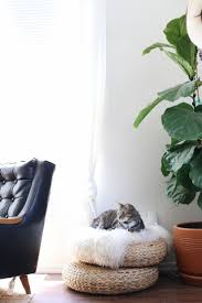 133 best cat beds images on pinterest cat beds animals and cat