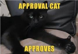 Crazy Cat Memes - thumbs up i love cats pinterest cat polydactyl cat and animal
