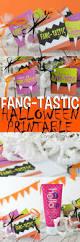 halloween party goody bags 5336 best halloweeny images on pinterest halloween ideas happy
