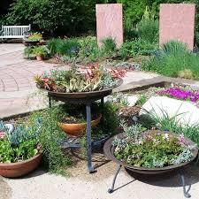 Patio Container Garden Ideas Mountain Gardening A Colorful Patio Container Garden