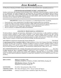 Resume Title Examples Customer Service Resume Title Example