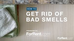 How To Get Rid Of Kitchen Sink Odor How To Get Rid Of Bad Smells Youtube