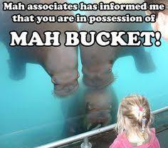 Meme Bucket - pin by anna you on mah memes pinterest