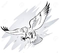 eagle drawings clip art 44
