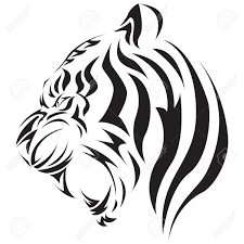 tiger royalty free cliparts vectors and stock