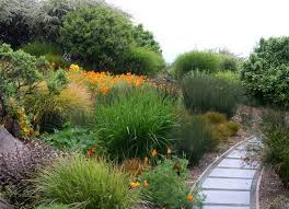 native plants for pots when to plant vegetables archives garden trends