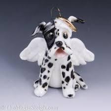 great dane mastiff mix google search fun pinterest mastiff