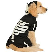 Dog Costume Halloween 22 Pets Costume Images Pet Costumes