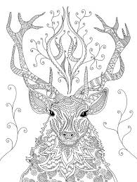 1101 colouring pages images coloring books
