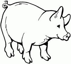 pig coloring pages lezardufeu com