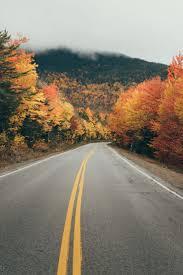 halloween city seabrook nh 179 best unbelievable roads images on pinterest landscapes