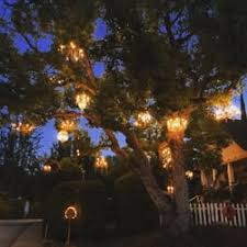 chandelier tree 515 photos 163 reviews local flavor 2811 w