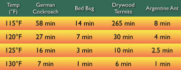 Treatment For Bed Bugs 1st Response Pest Control Management And Extermination Bed Bugs