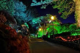 Best Night Lights Colored Led Landscape Lighting Quanta Lighting