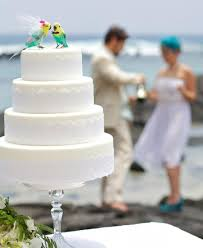 parakeet cake topper in aqua green and yellow tropical bride and