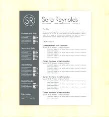 drive resume template drive resume template skywaitress co