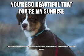 You Are Beautiful Meme - you re so beautiful that you re my sunrise and i d like you to
