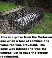 Meme Zombie - zombies vires or humans burying a false meme horrorfuel com