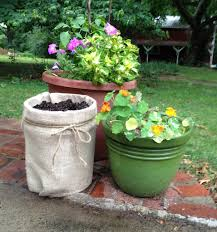 turn a 5 gallon bucket to a burlap planter for pennies hawk hill