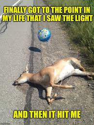 Deer Meme - check out the balloon imgflip