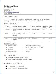sle resume for civil engineer fresher pdf merge freeware cnet bsc computer science resume model resume format for freshers of