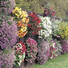 Vertical Flower Bed - unusual flower container ideas 10 container garden ideas that