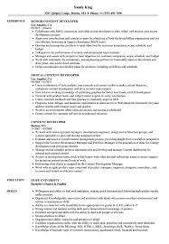 free resume template layout sketchup program car remote content developer resume sles velvet jobs