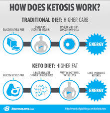 In Depth Look At Ketogenic Diets And Ketosis