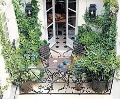 kletterpflanzen fã r balkon 130 best aménagement terrasses images on landscaping