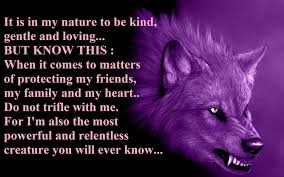 Lone Wolf Meme - lone wolf full hd wallpaper and background image 1920x1200 id