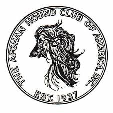afghan hound rescue england afghan hound club of america u2013 national rescue a 501 c 3 not