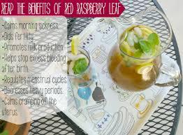 Seeking Tea Raspberry Leaf Tea Benefits Baby On Board Or Not You Ll