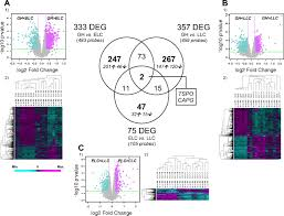 articles physiological genomics