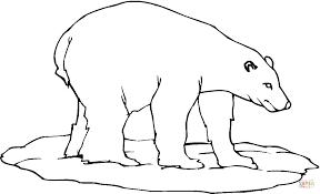 luxury polar bear coloring 40 coloring polar