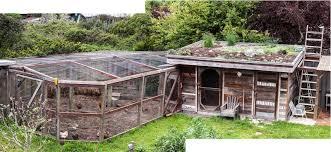 lloyd u0027s blog chicken coop in the spring