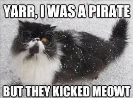 Funny Snow Meme - snow meme best list of funny snow storm pictures