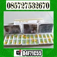 085727532670 jual klg pills di denpasar toko obat klg asli