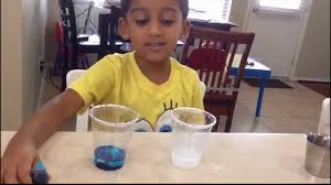 salt water and food coloring experiment youtube