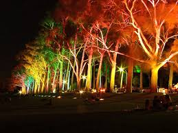 led landscape lighting brings holiday cheer with the change of a