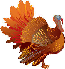 colorful turkey cliparts free clip free clip